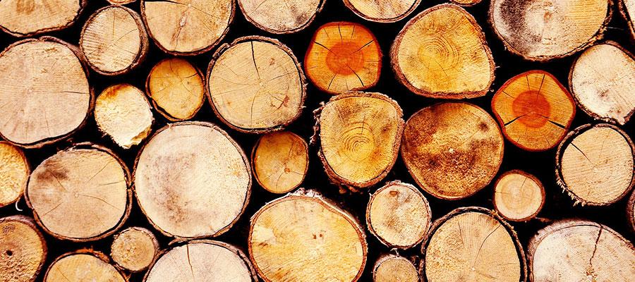 Jakie drewno do wędzenia wybrać?